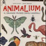 Animalium da Farollo e Falpalà libreria per bambini e ragazzi di Firenze